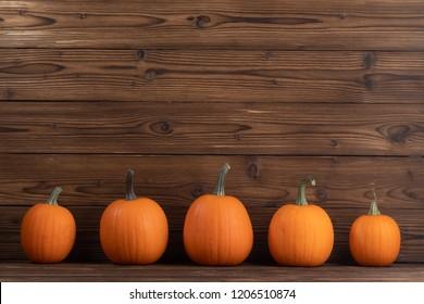 Pumpkins - 5 pack